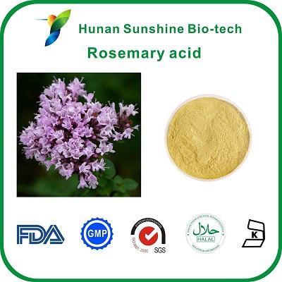 Extrait de feuille de romarin, 20% d'acide rosmarinique - Apparence: Poudre marron