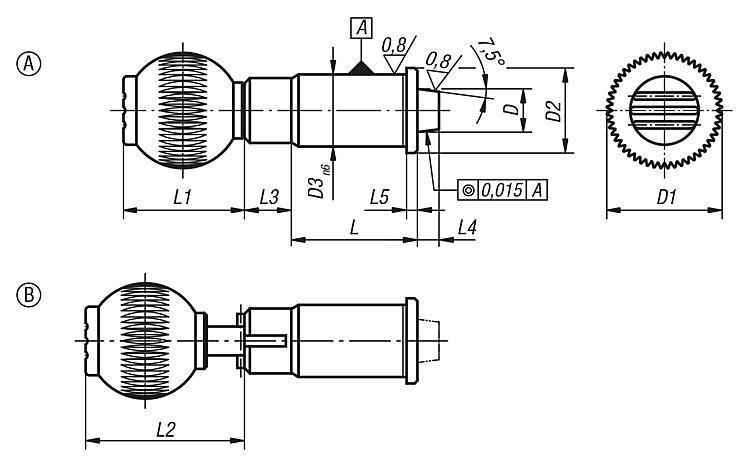 Doigt d'indexage de précision avec doigt d'arrêt conique - Doigt d'indexage à corps lisse