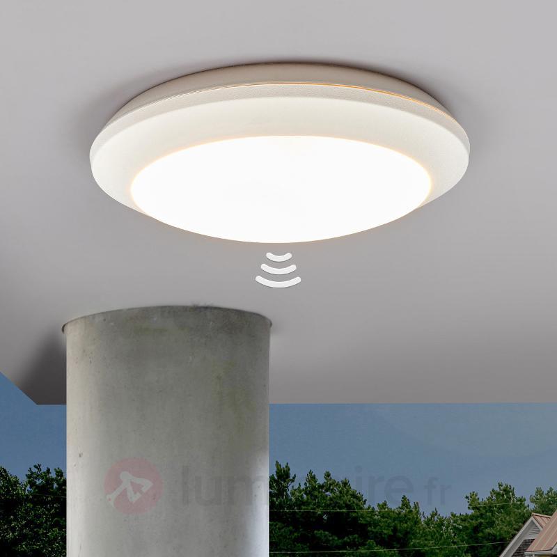 Plafonnier Uberta à détecteur, blanc, 11W, 3000K - Plafonniers avec détecteur