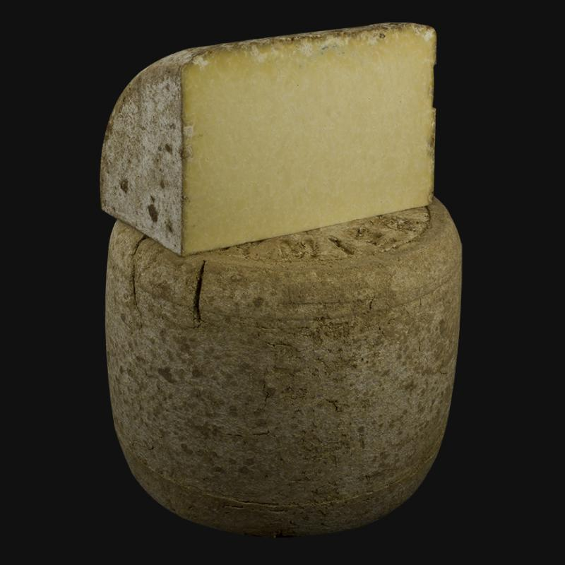 CANTAL - Fromage
