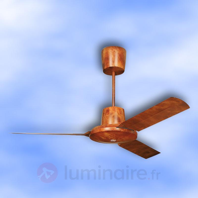 Nordik Evolution - Ventilateur de plafond, 142 cm - Ventilateurs de plafond modernes