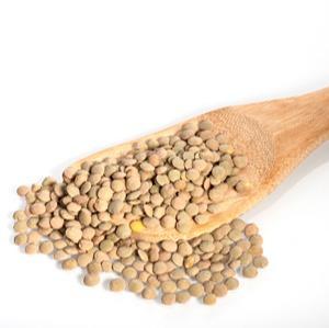 Lentils - Green lentils
