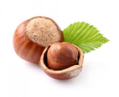 Hazelnut pastes
