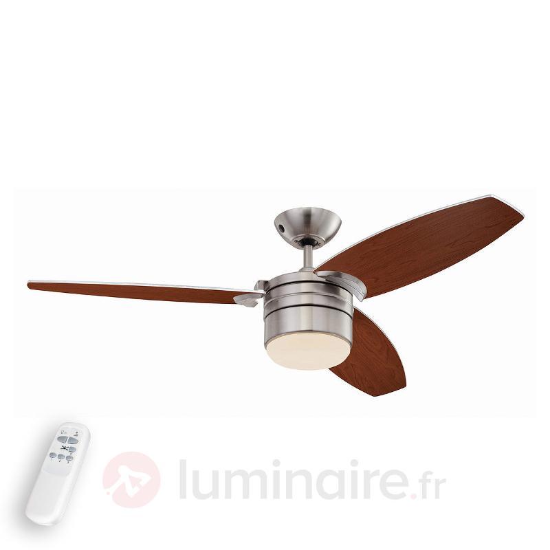 Ventilateur de plafond Lavada avec télécommande - Ventilateurs de plafond lumineux