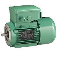 Brake induction motor