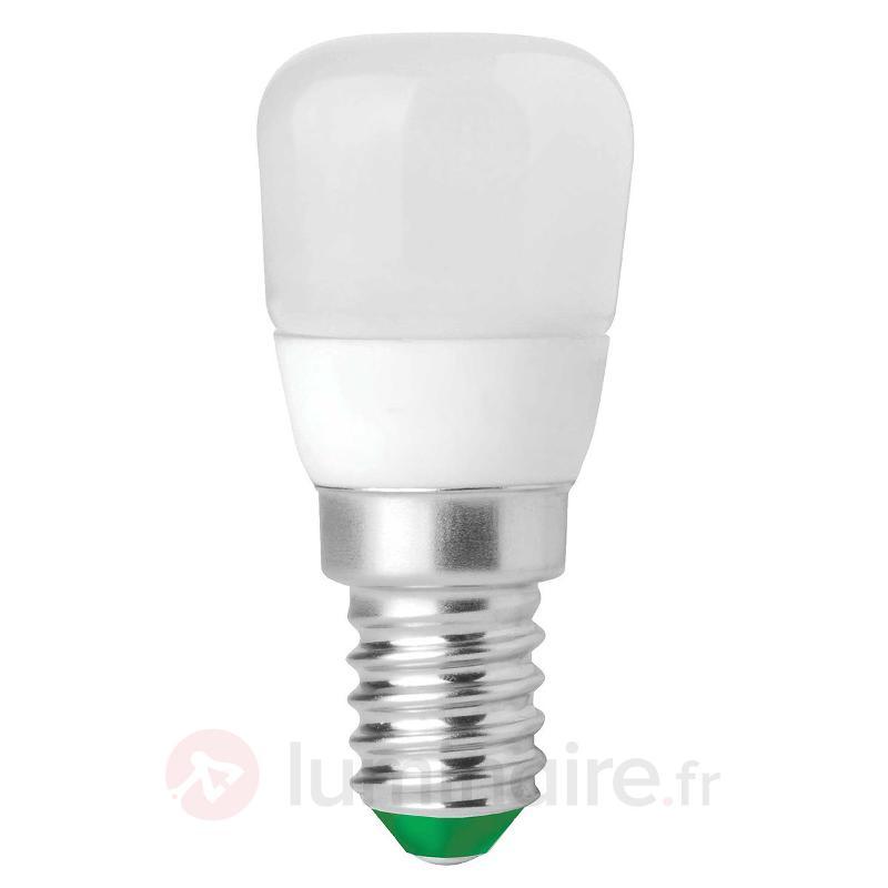 LED pour réfrigérateur E14 2W 828 MEGAMAN Economy - Ampoules LED E14