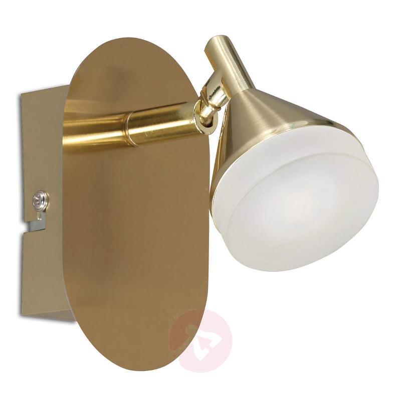 Cameron LED wall spotlight - Wall Lights