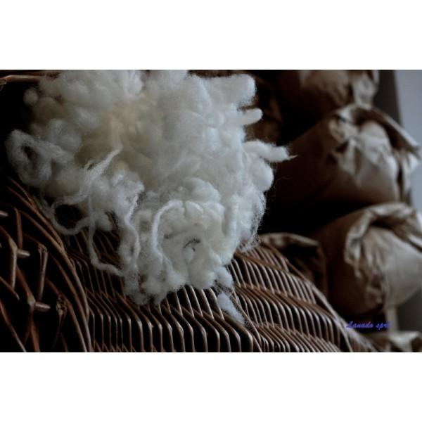 WASHED AND WASHABLE BELGIAN WOOL - WOOL IN BULK