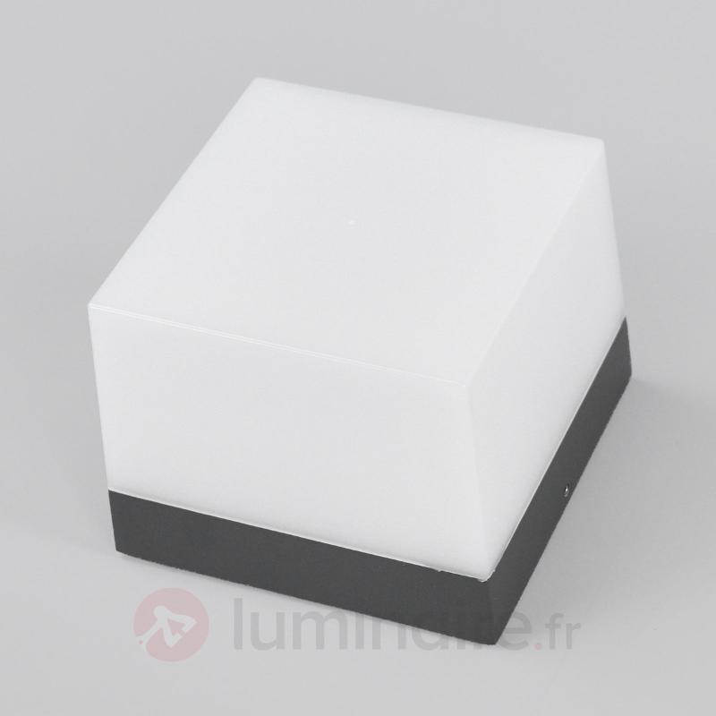 Applique d'extérieur LED carrée Cahita - Appliques d'extérieur LED