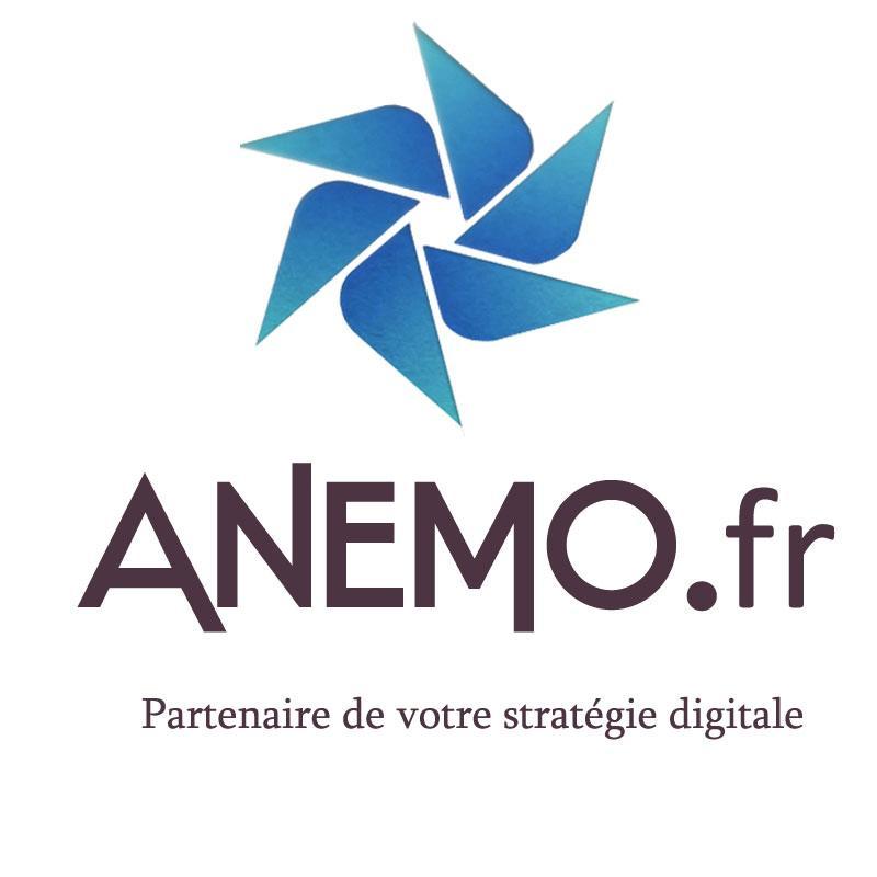 ANEMO  Agence Web partenaire dans votre stratégie digitale
