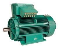 Three-phase induction motor for very corrosive and/or chemical environments  - FLS/FLSES Corrobloc finish - 0.18 to 675 kW