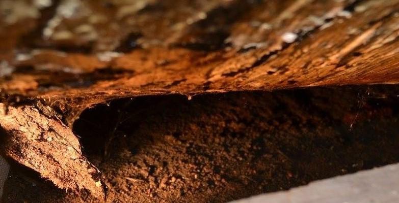 Pollution Hydrocarbure - Placement d'une citerne provisoire