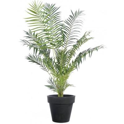 Location de plante Areca artificiel - null