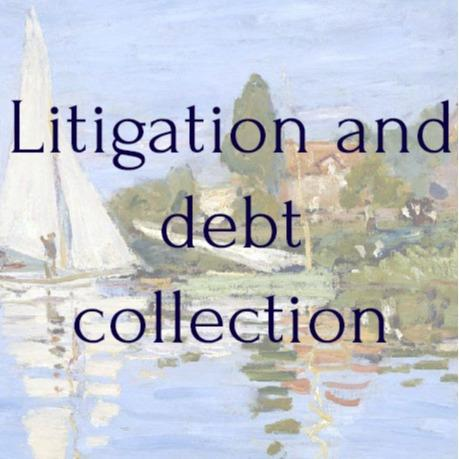 Litigation and debt collection  -