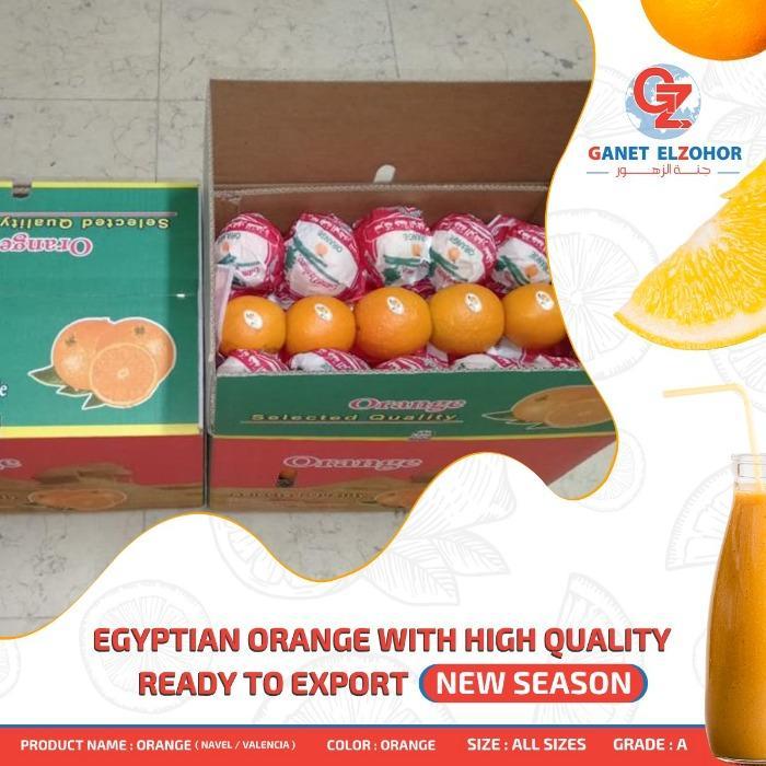 Naranja - Orgánica