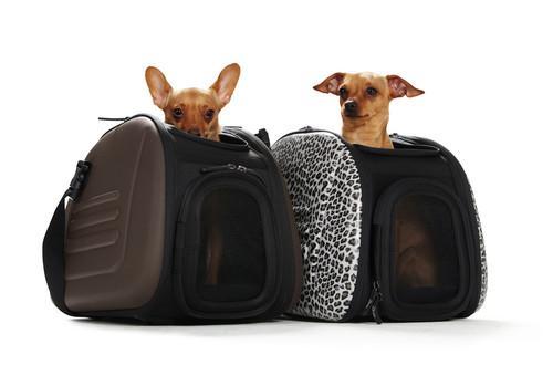 Panier pour chiens Hunter -