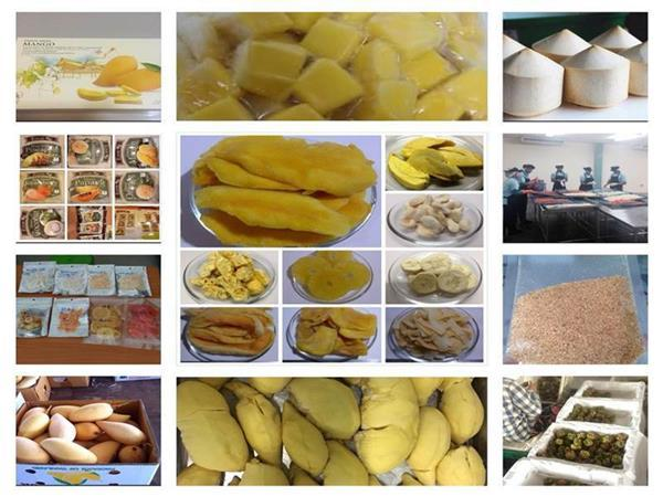 Dried / Freeze Dried / Frozen (IQF) / Fresh Fruits - Thai fruit and vegetable products