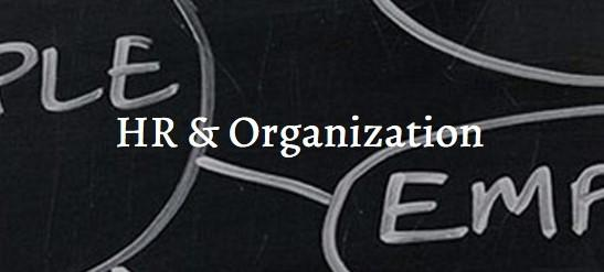 HR & Organisation  - Interim Management Asia and Middle East