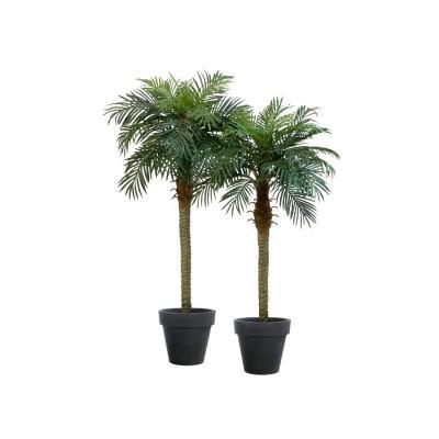 Location de palmier phoenix artificiel - null