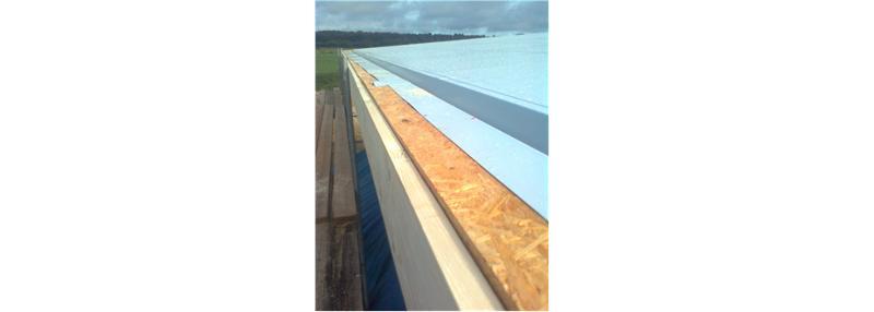 Toiture plate et verdissement - Construction en bois
