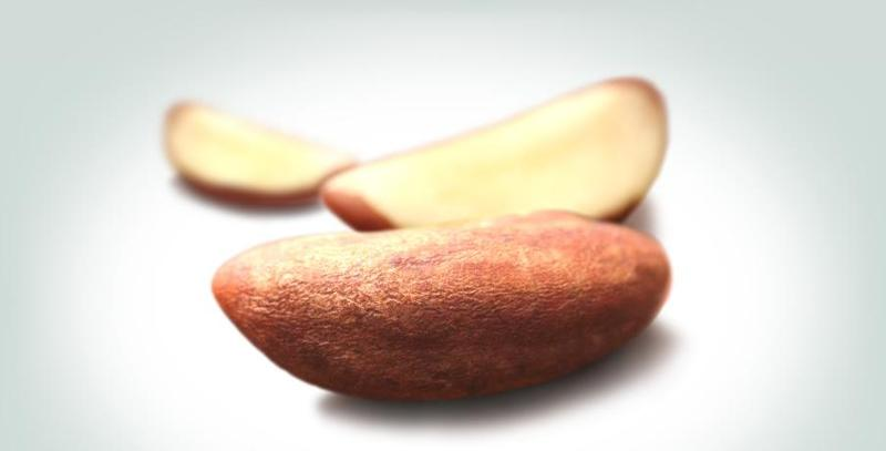 Nuts - Brazil Nuts: The power of nut-rition
