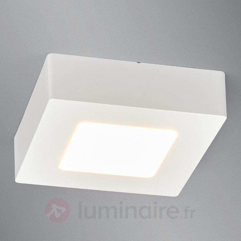 Plafonnier LED compact Rayan, salle de bains - Tous les plafonniers