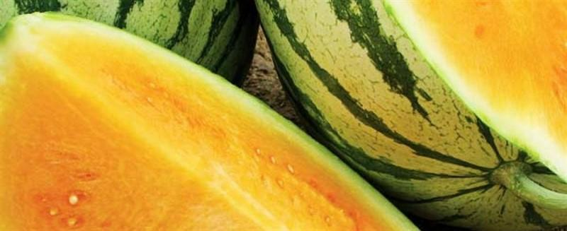 Watermelons from Greece - Pre-Order NOW