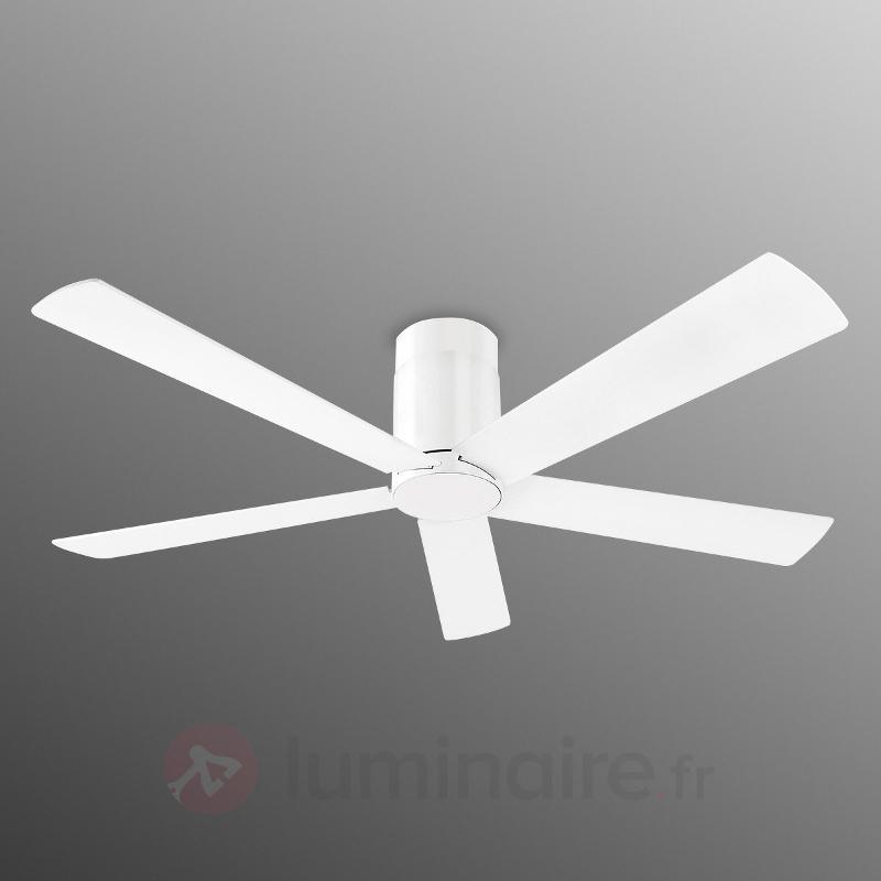 Ventil. de plafond Rodas, design clair blanc - Ventilateurs de plafond modernes