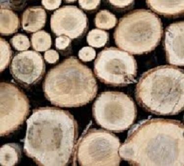 Firewood Logs - Firewood logs for sale