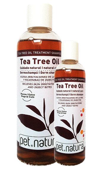 Dermochampú Tea Tree Oil - Aceite del árbol del té y camelia sinensis leaf extract
