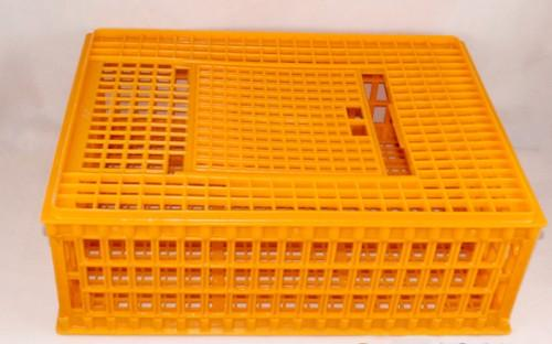 chicken/duck transport cage - Poultry plastic chicken/duck/pigeon/dove transport cage /crate/case/box