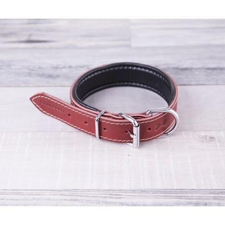 Dog Collar  - DG10