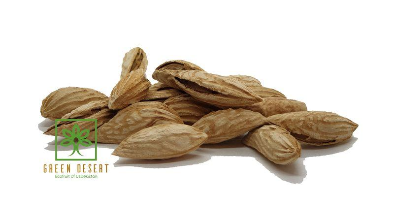 Almond - Almond in shell - President