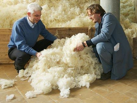 SCOURED AND WASHABLE WOOL - Ecological treatment