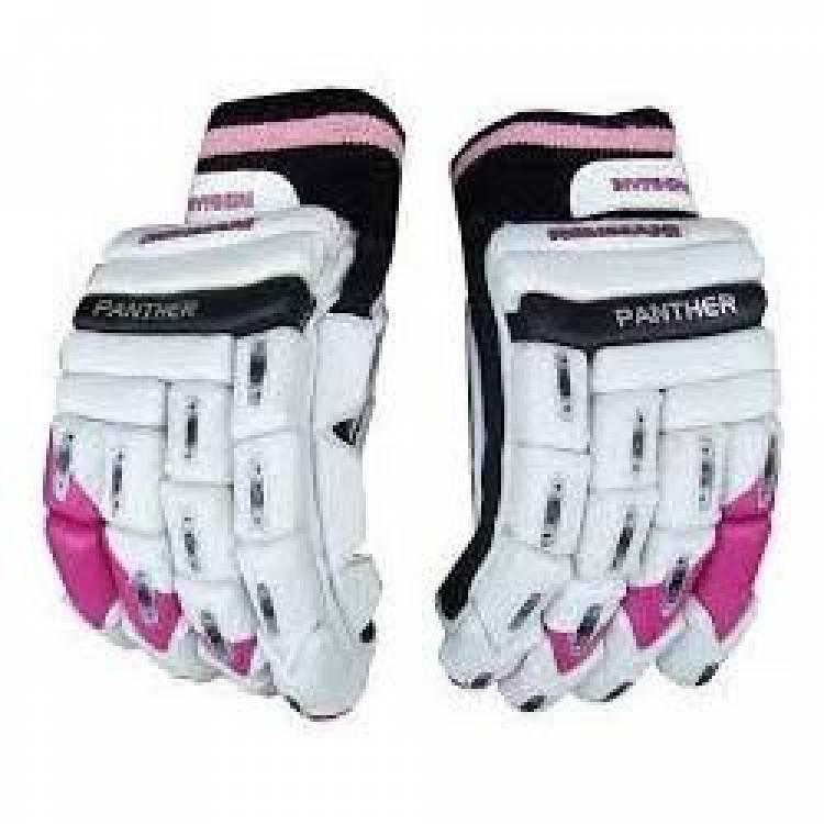 Batting Cricket Gloves - crickets gloves and pad