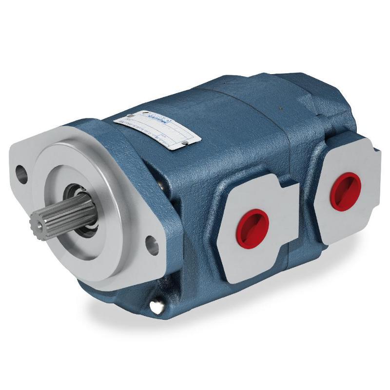 Pompe ad ingranaggi - corpo in ghisa - Pompe e motori ad ingranaggi