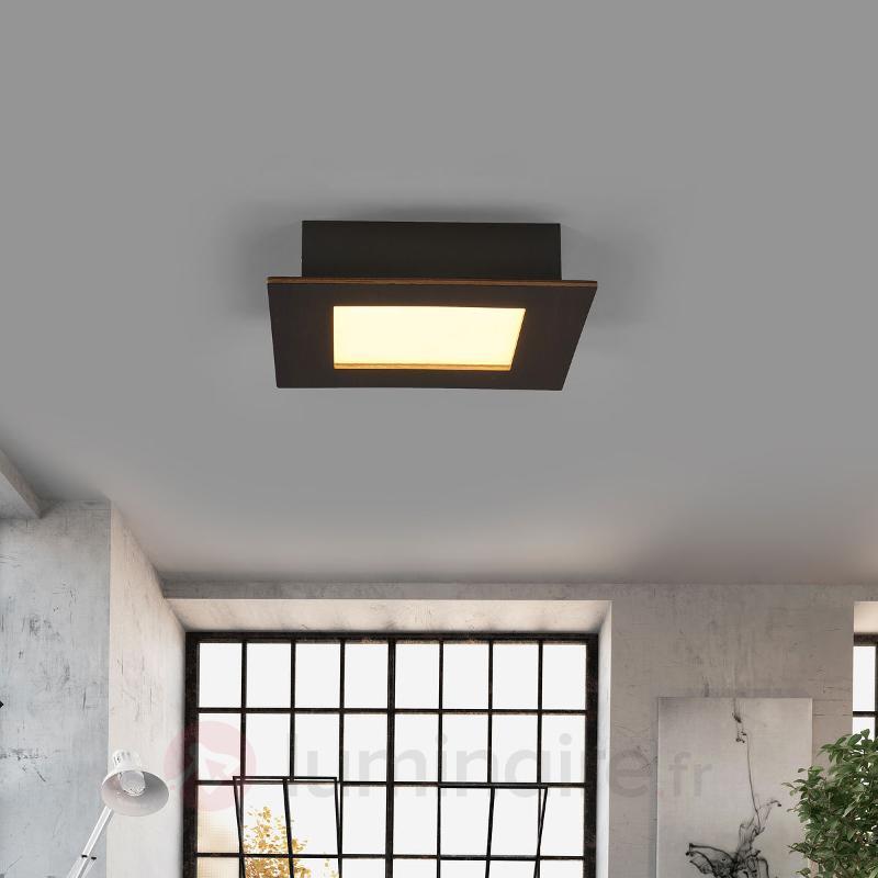 Plafonnier LED Deno bois sombre, chêne colonial - Plafonniers LED