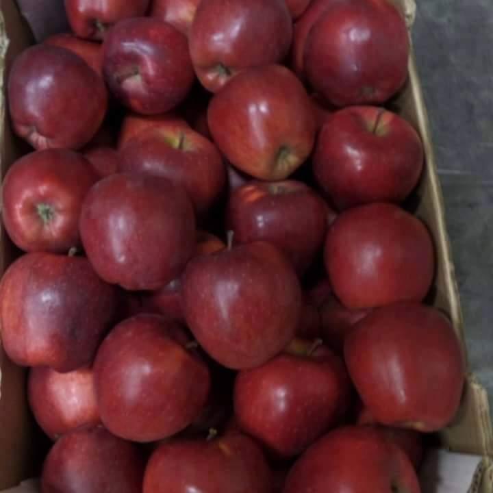 Яблоко - Македония