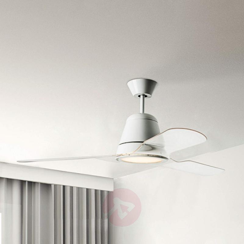 Transparent blades - Tiga ceiling fan - fans