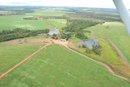 Farmland for sale in Tocantins Brasil - Reference: FARM TO-004