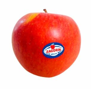 APPLES - Starking and Golden delicious Protected Designation of Origin