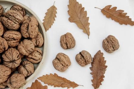 Les préparations et pâtes de fruits à coques - Les autres noix