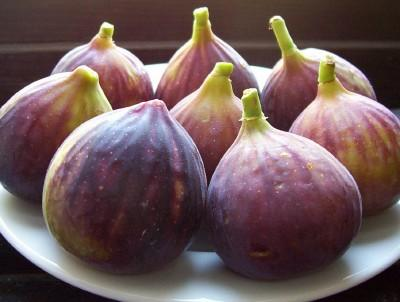 BLACK FIGS - BURSA BLACK FIGS