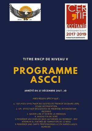 formation initiale ascci