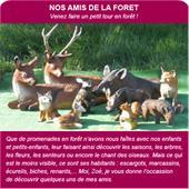 Animaux en résine - animaux de la forêt : animaux de la forêt en résine.