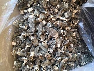 Сморчки Сушеные (Morchella conica) 2019 года -