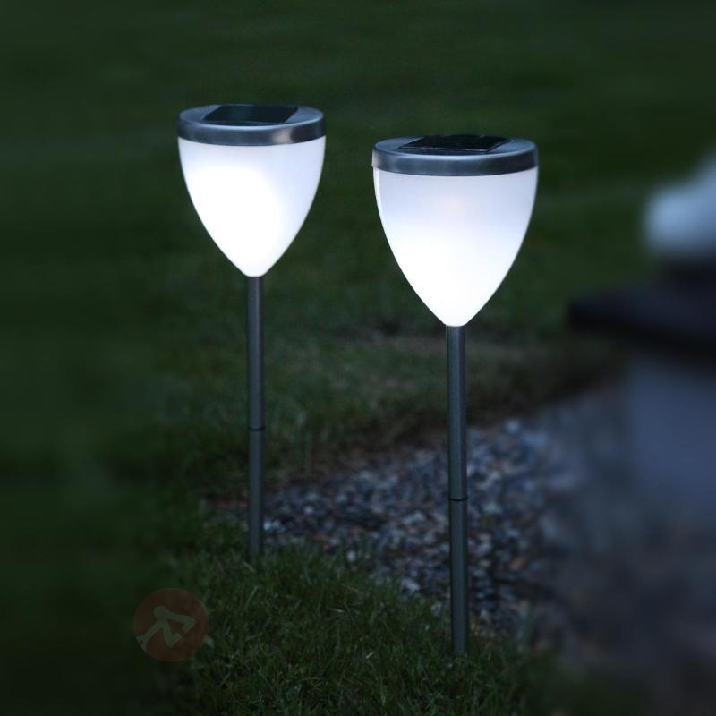 Set de 2 lampes solaires LED décoratives Jannik - Lampes solaires décoratives