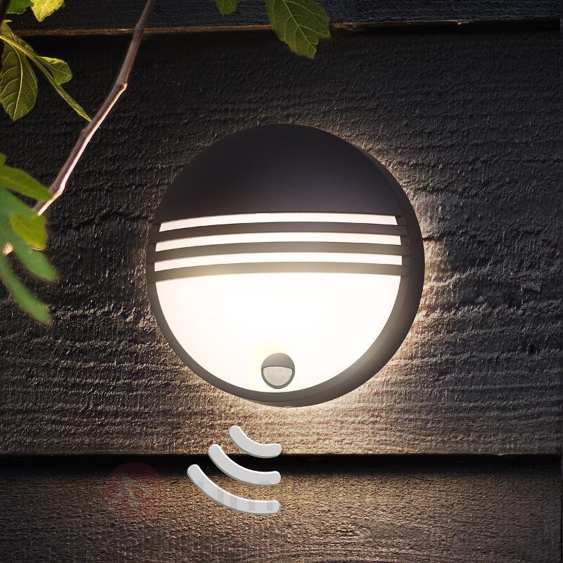 Applique d'extérieur LED Yarrow avec détecteur - Appliques d'extérieur avec détecteur