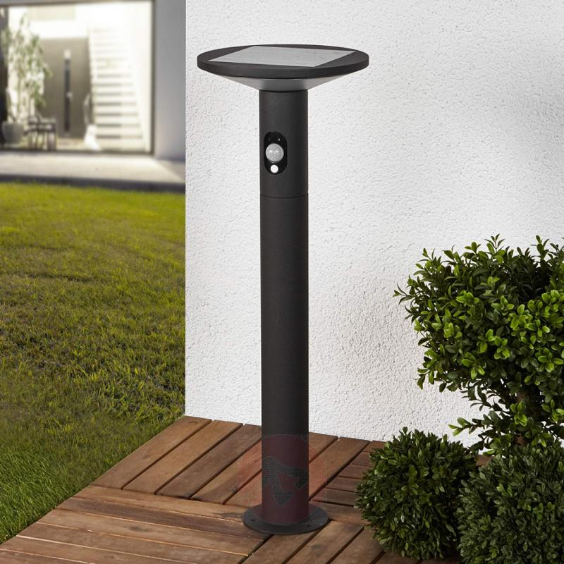 Solar LED path light Jersy in graphite grey, 60 cm - outdoor-led-lights