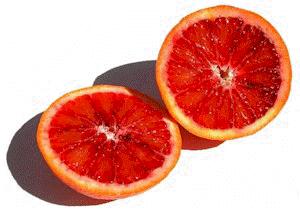 Orange sanguine - Pulpe